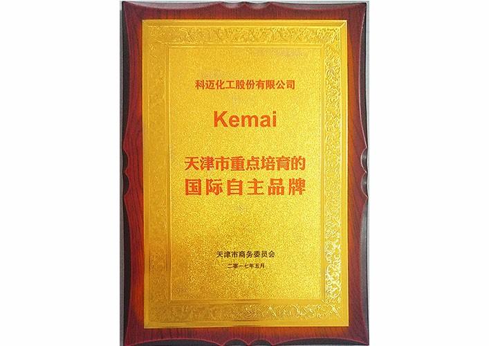 天津市重点培育的国际自主品牌