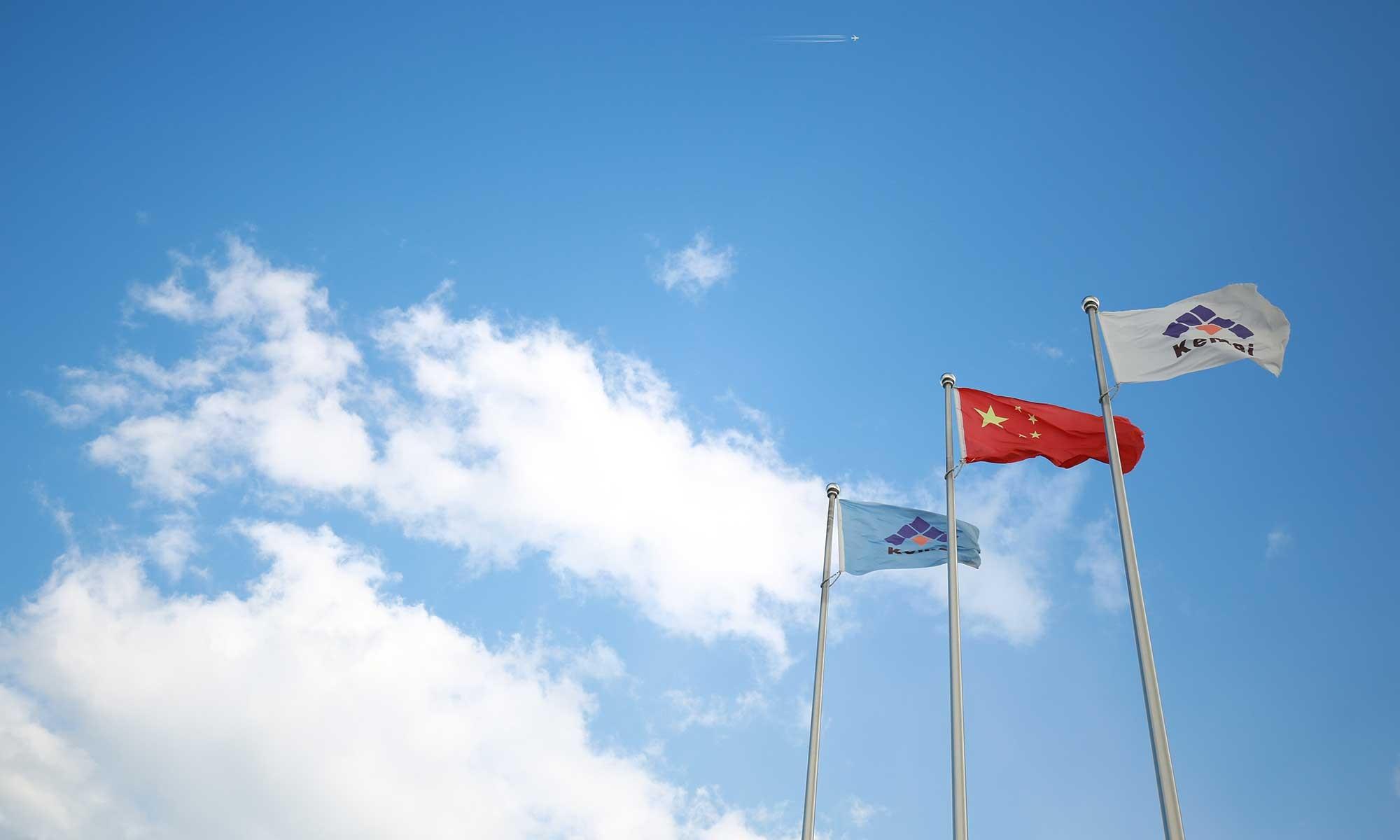 【轮胎世界网】王树华:看好中国轮胎和助剂前景